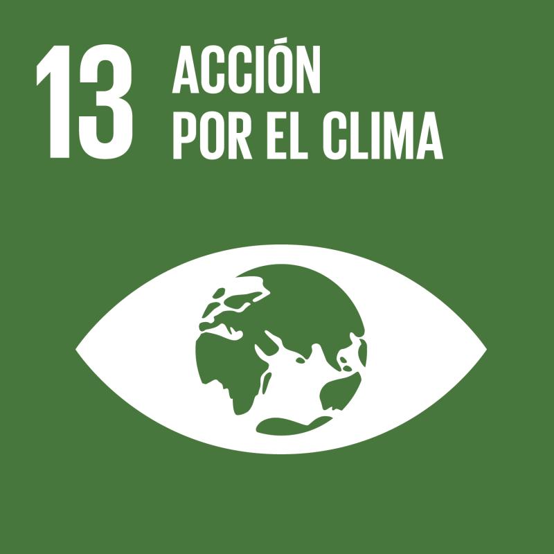 ODS Nº 13