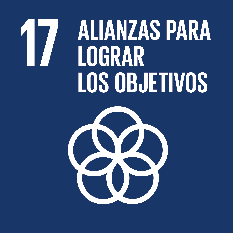 ODS Nº 17